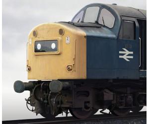 Class 40 No. 40065 Portrait